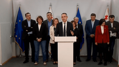 Photo of European Georgia, Free Democrats Join Forces for Mtatsminda By-Elections