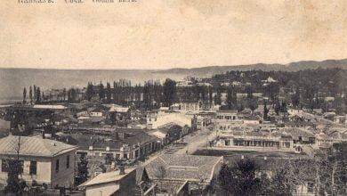 Photo of ქართველთა და ესტონელთა აჯანყება დენიკინის წინააღმდეგ სოჭის ოლქში