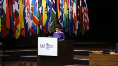 Photo of Minister Tsulukiani Addresses ICC Assembly, Unveils Plan to Nominate ICC Judge