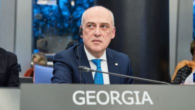 Photo of Foreign Minister Scolds Ambassador to Denmark for Defending Detained Colleague
