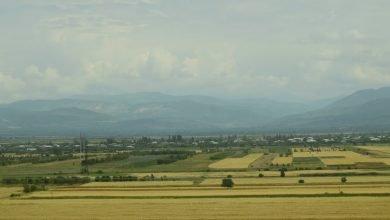 Photo of Правительство представило Антикризисный план поддержки сельского хозяйства