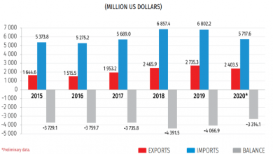 Photo of Georgia's Foreign Trade in January-September 2020