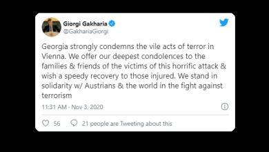Photo of Georgian Leaders Condemn Vienna Attack