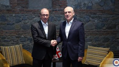 Photo of Foreign Minister Zalkaliani Hosts Armenian Counterpart