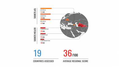 Photo of Georgia in TI's 2020 Corruption Perception Index