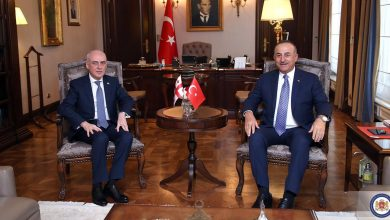 Photo of Georgian Foreign Minister Visits Turkey